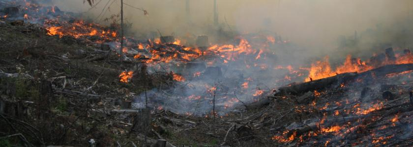 Natural-Human Systems Assessment of Wildfire Vulnerability (image credit: Robert Heinse)
